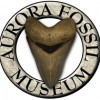 Aurora Fossil Museum part of the Historic Albemarle Tour