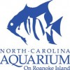Visit the DINOSAURS at the NC Aquarium