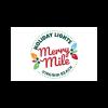 Christmas Lights at the Virginia Beach Boardwalk Events