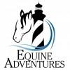 Equine Adventures on Hatteras Island