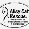 Alley Cat Rescue – Outer Banks Feline