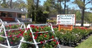 Manteo Island Produce and Garden