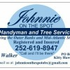 Outer Banks Tree Service Experts