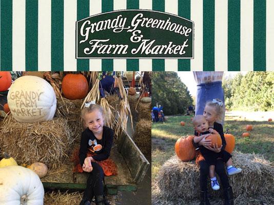 Grandy Pumpkin Patch and Farm Market
