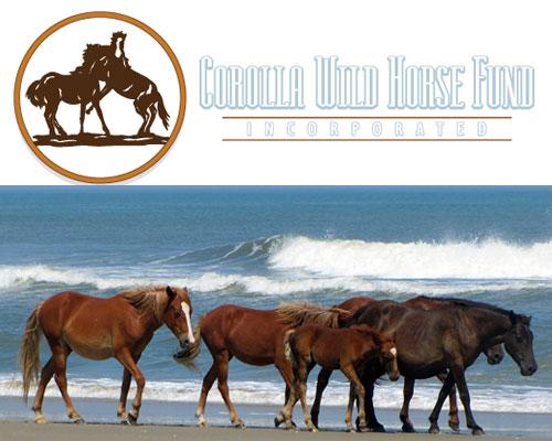 Corolla Horse Fund