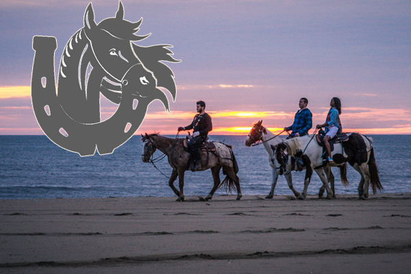 Virginia Beach and OBX Horseback Riding Tours